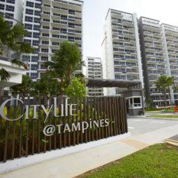the-gazania-lilium-city-life-singapore