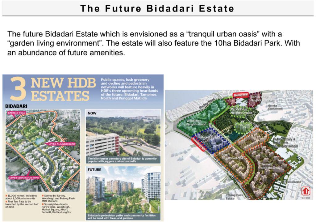 the-gazania-lillium-bidadari-transformation2-singapore