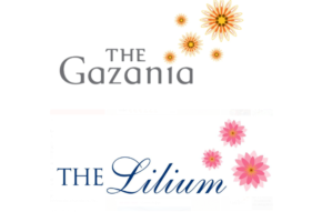 the-gazania-lilium-singapore-logo3
